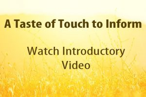 A Taste of Touch to Inform with Bonnie Kissam